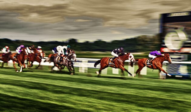 virtual horse racing online event