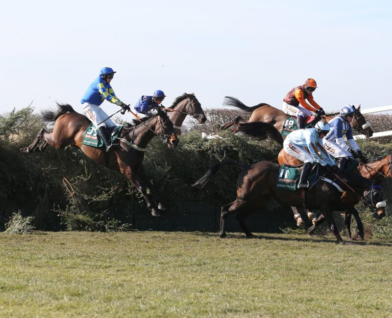 Grand National Aintree Liverpool Horse Racing Race Course Corporate Sports Hospitality