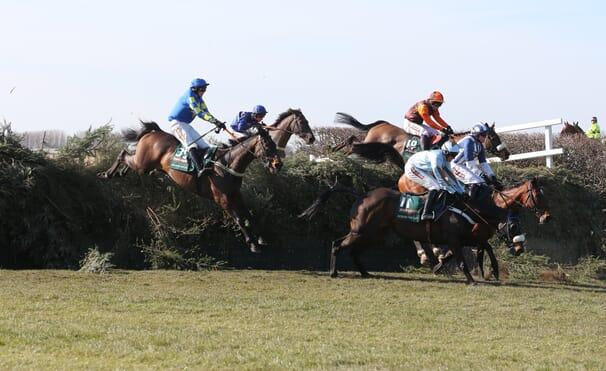 Horse Racing Hospitality
