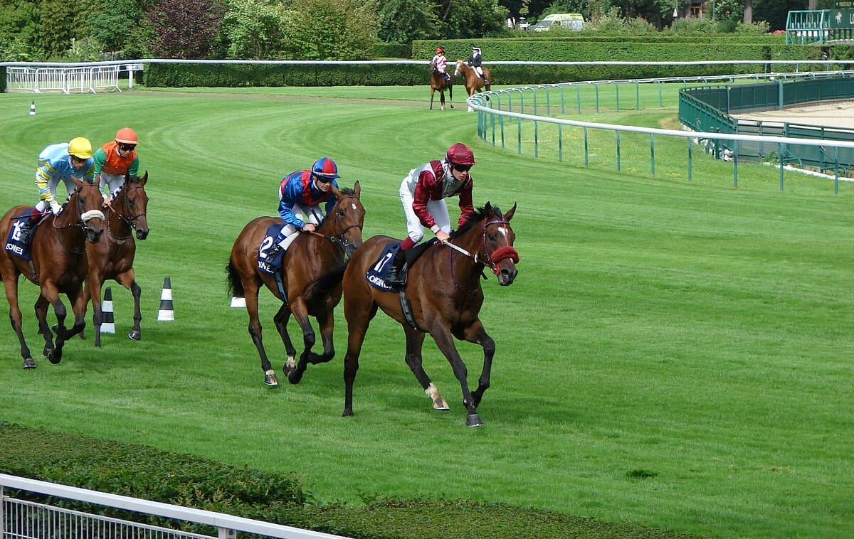 Horse Racing Race Course VIP Corporate Sports VIP Hospitality Qatar Prix De l'Arc De Triomphe Longchamp Racecourse hospitality