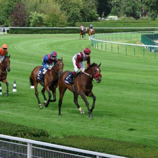 Horse Racing Race Course VIP Corporate Sports VIP Hospitality Qatar Prix De l'Arc De Triomphe Longchamp Racecourse hospitality