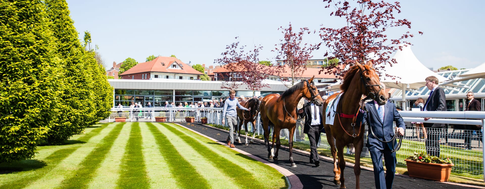 Chester Horse Racing Race Course Corporate Sports Hospitality