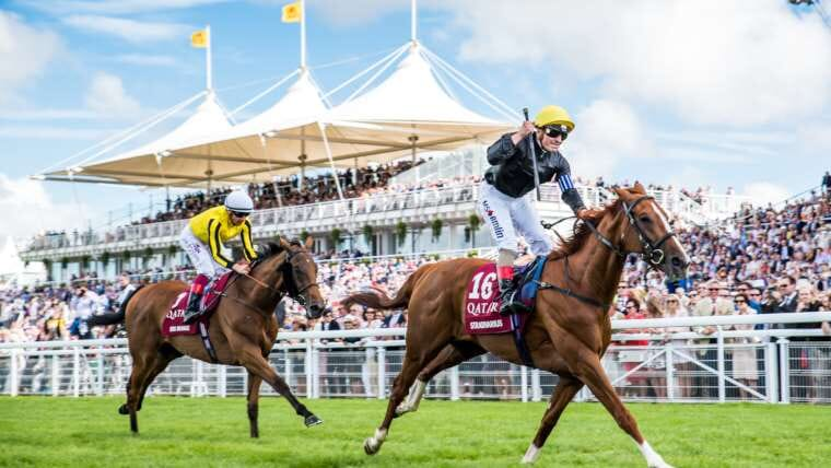 Qatar Glorious Goodwood Raceday Corporate Sports VIP Hospitality Qatar Glorious Goodwood Raceday Hospitality
