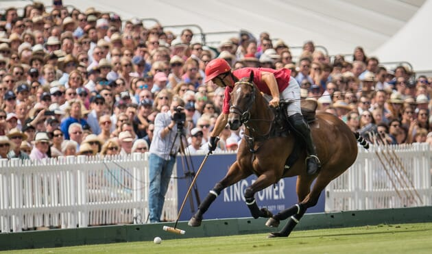 King power gold cup finals polo VIP Corporate Sports VIP Hospitality